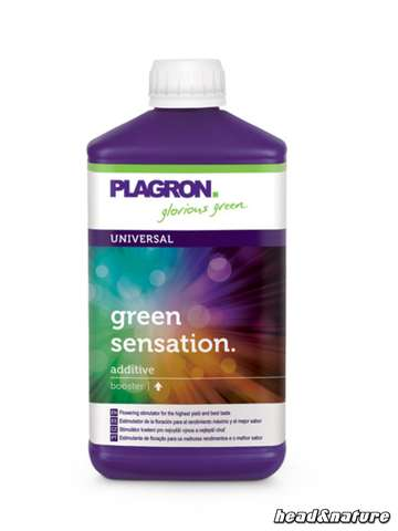 Plagron Green Sensation - stimolatore di fioritura 500ml